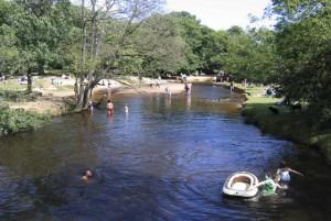 Balmer Lawn stream